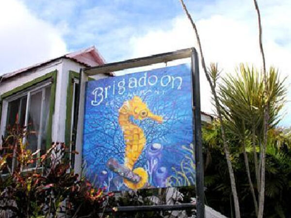 Best Windwardside Saba Island Restaurants