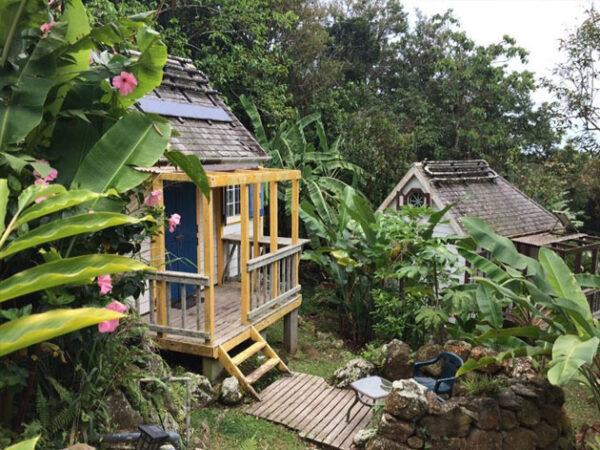 Saba Ecolodge Accommodations